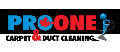 Pro One Carpet Cleaning